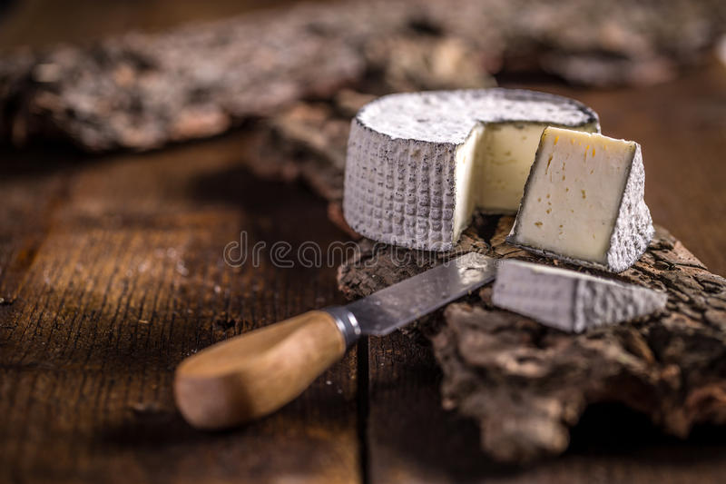 Queijo do camembert fotografia de stock royalty free