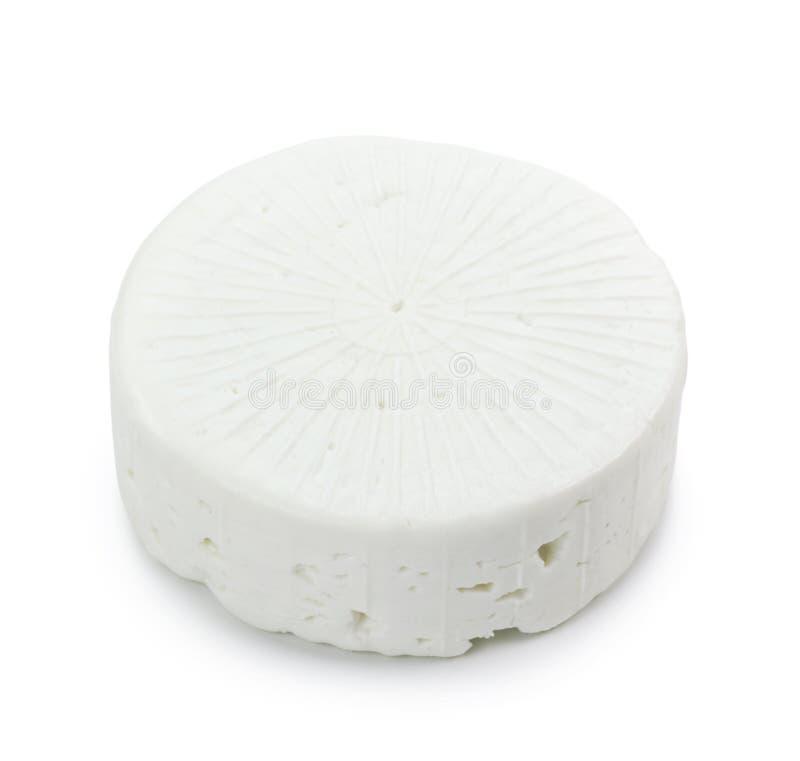 Queijo do leite da cabra imagens de stock