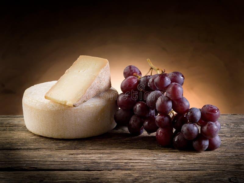 Queijo e uvas fotografia de stock royalty free
