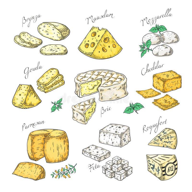 Queijo tirado m?o Aperitivos da garatuja e fatias do alimento, tipos diferentes Parmesão do queijo, feta do queijo Cheddar do bri ilustração do vetor
