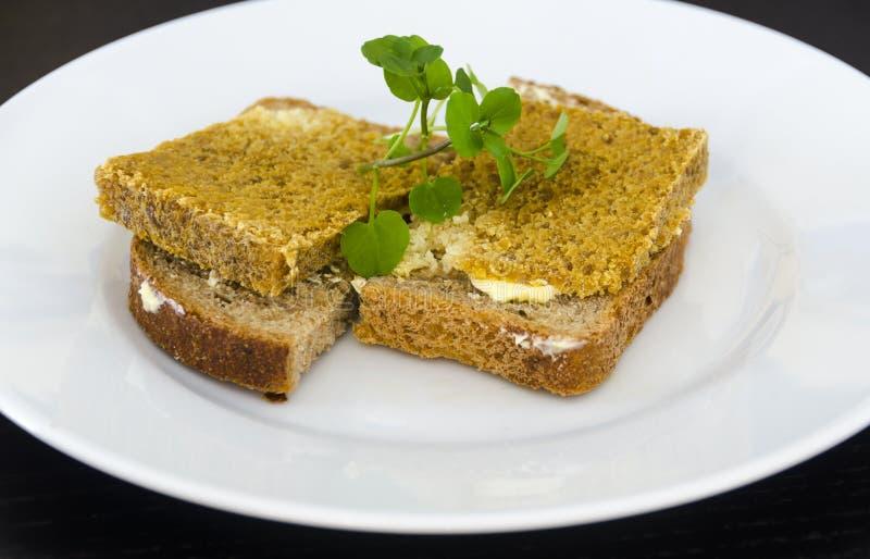 Queijo velho norueguês no pão foto de stock