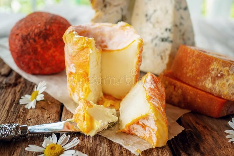 Queijos picantes das guloseimas de variedades diferentes Queijo Cheddar vermelho, azul de Dor, queijo Stilton, outeiro de Belper  imagem de stock