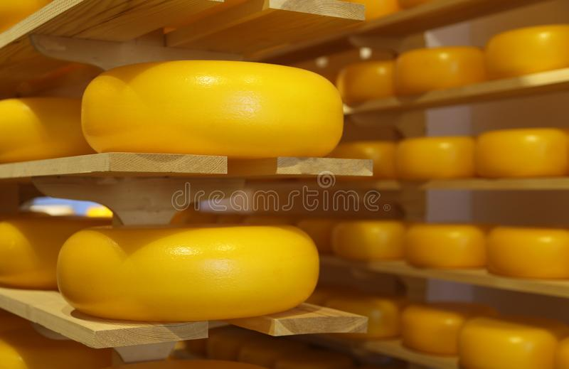 queijos típicos da Holanda para a venda na loja foto de stock