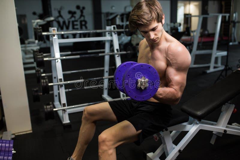 Queimadura agradável no bíceps Opinião lateral o homem considerável novo seguro no sportswear que exercita com peso no gym fotos de stock royalty free