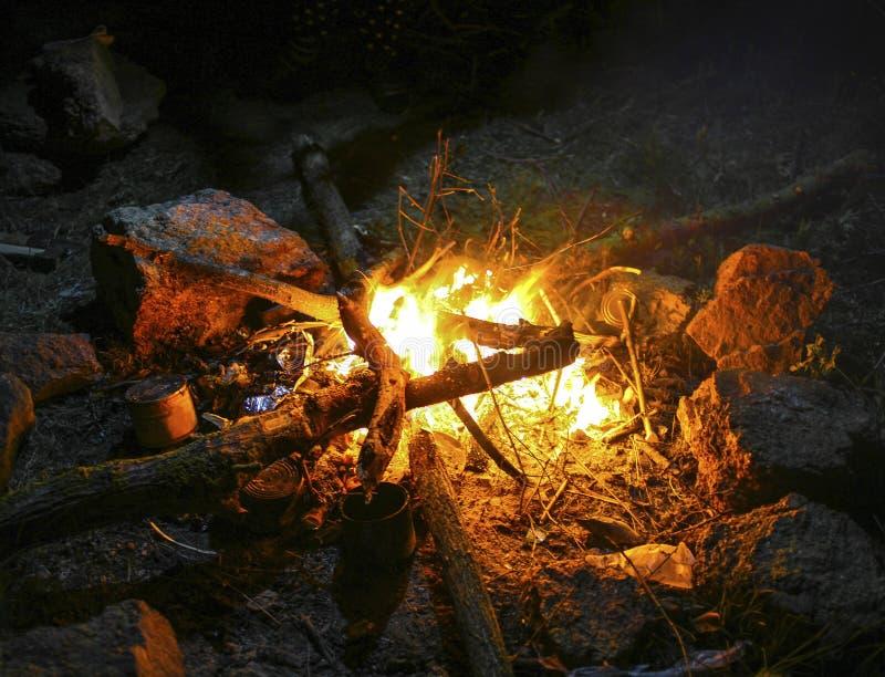 Queimadura de madeira em um fogo na noite foto de stock