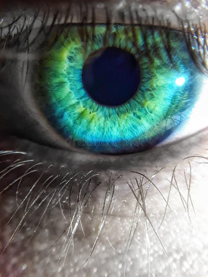 Quel oeil voient dans un monde si noir et blanc image stock