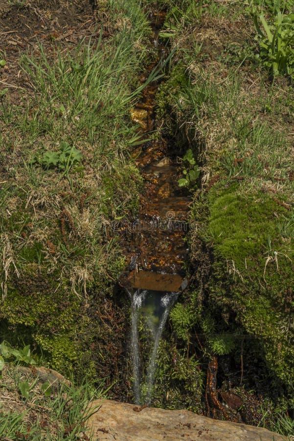 Quelle mit kleinem Morgen des Nebenflusses im Frühjahr lizenzfreie stockfotos
