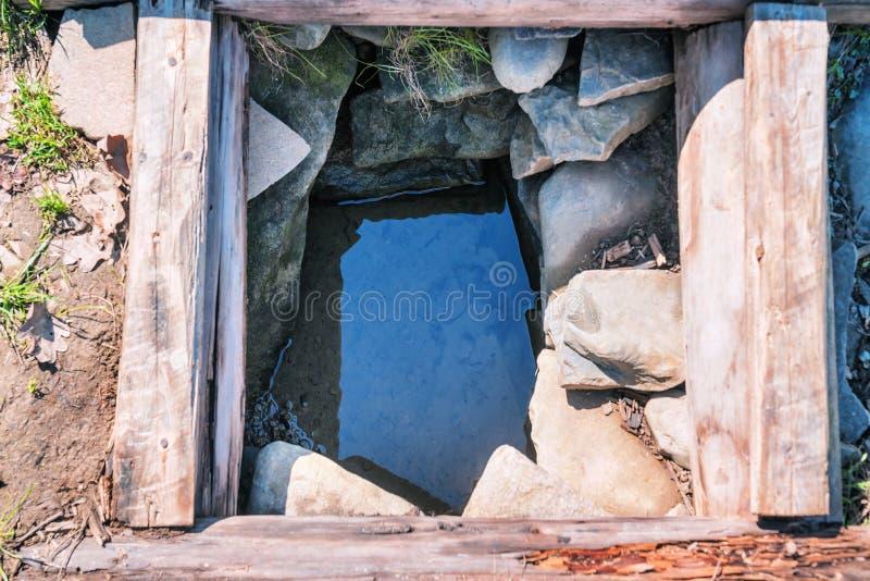 Quelle mit Süßwasser stockbild