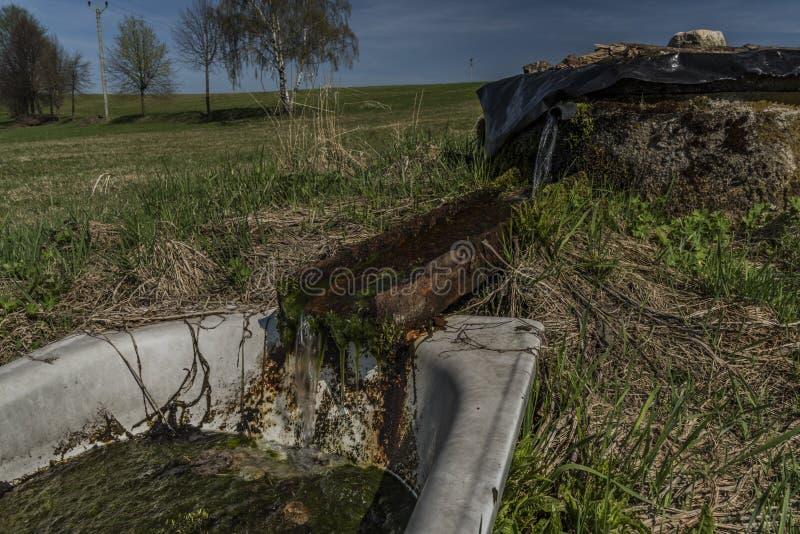 Quelle mit Trinkwasser und Bad auf Frühlingswiese stockbilder