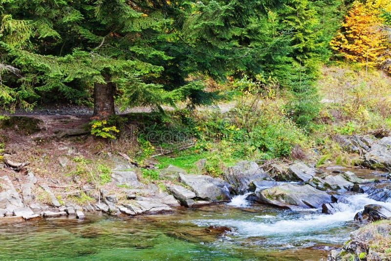 Quelle, Wasser und Bach stockfoto