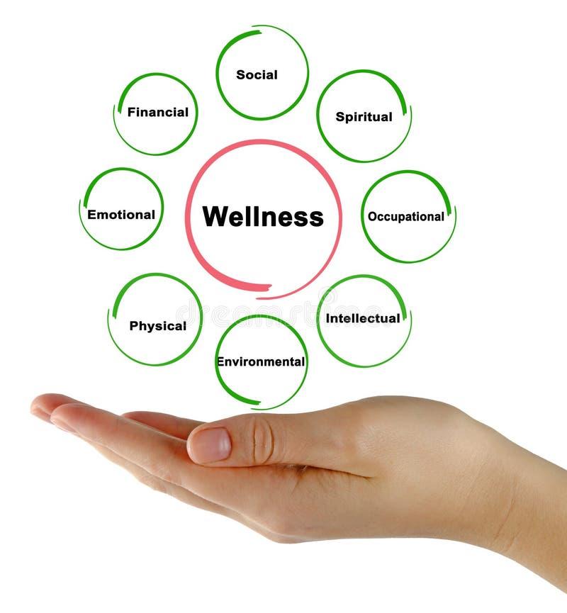 Quellen von Wellness stockbild