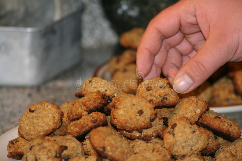 Quelqu'un prenant le chocolat Chip Cookies du plat image stock