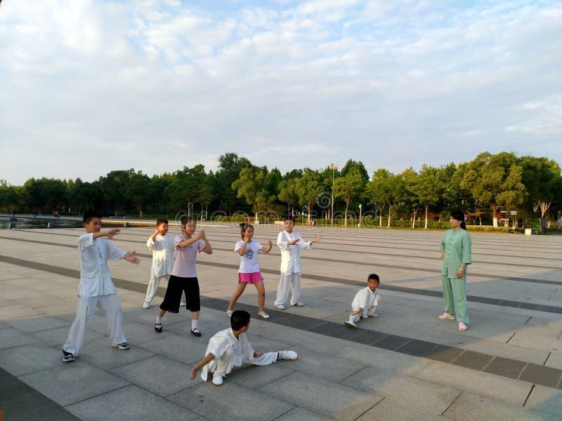 Quelques enfants apprennent des arts martiaux chinois images libres de droits