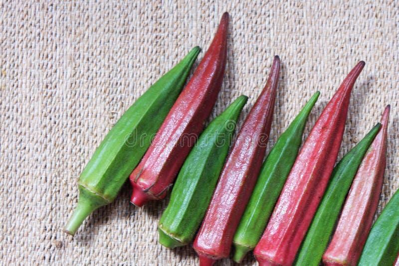Quelques gombo ou okro ou ladyfingers rouges et verts photo stock