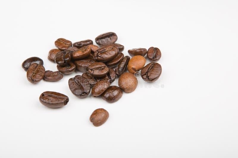 Quelques grains de café images stock