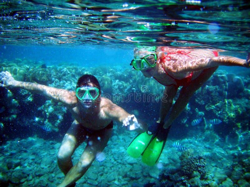 Quelques plongeurs sous le wate images stock