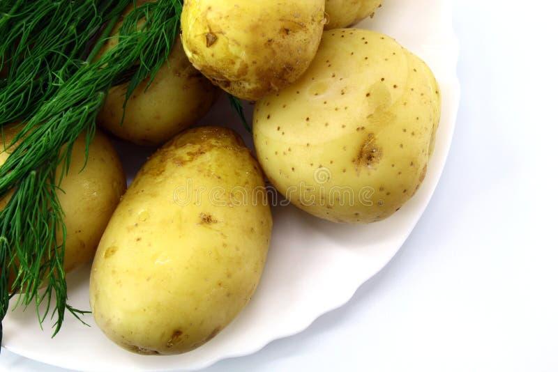 Quelques pommes de terre, cuites avec la peau, se trouvant d'un plat avec un petit groupe d'aneth photos libres de droits