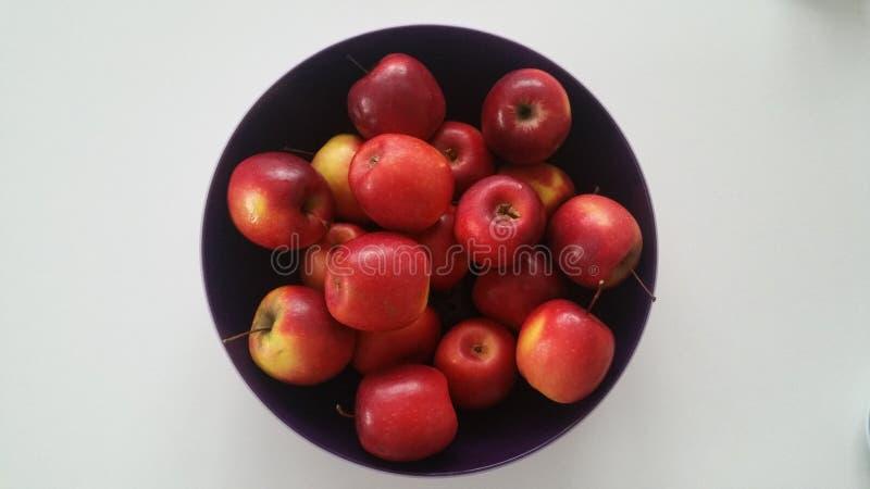 Quelques pommes rouges sur un fond blanc POMMES, images stock
