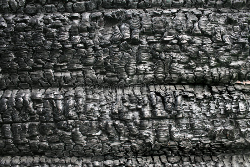 Quemado abajo de la pared de madera fotografía de archivo libre de regalías