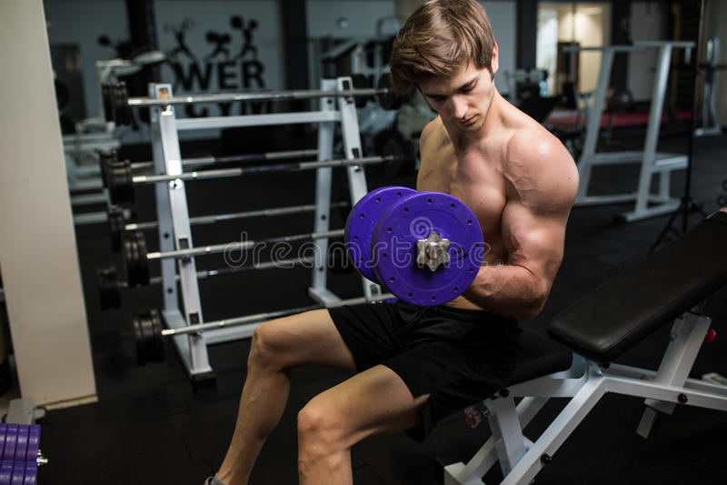 Quemadura agradable en bíceps Vista lateral del hombre hermoso joven confiado en ropa de deportes que ejercita con pesa de gimnas fotos de archivo libres de regalías