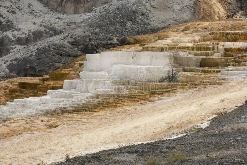 Quente, a rocha do carbonato chamou terraços dos formulários do travertino em Yellowst foto de stock royalty free