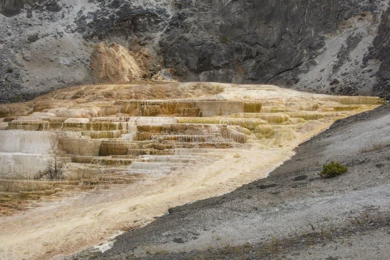 Quente, a rocha do carbonato chamou terraços dos formulários do travertino em Yellowst foto de stock