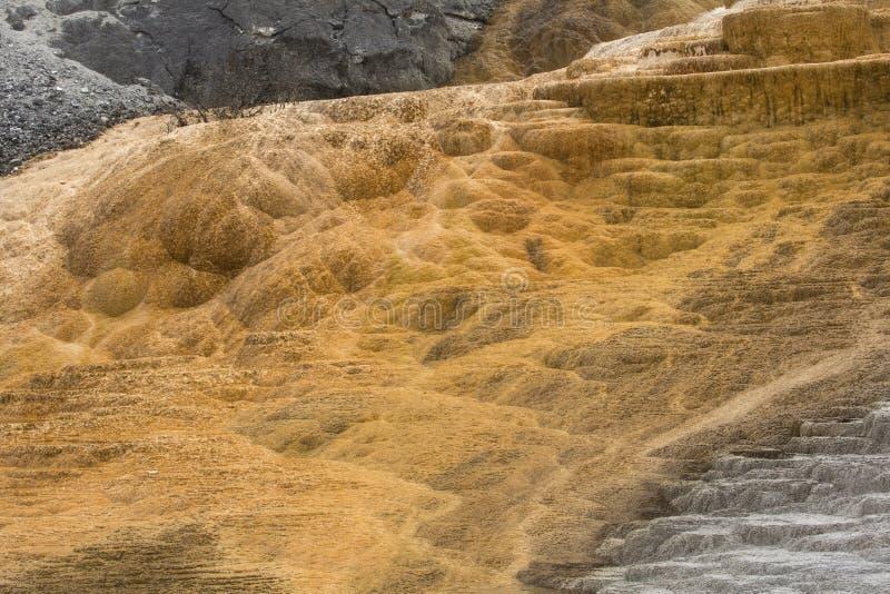 Quente, a rocha do carbonato chamou terraços dos formulários do travertino em Yellowst imagens de stock royalty free