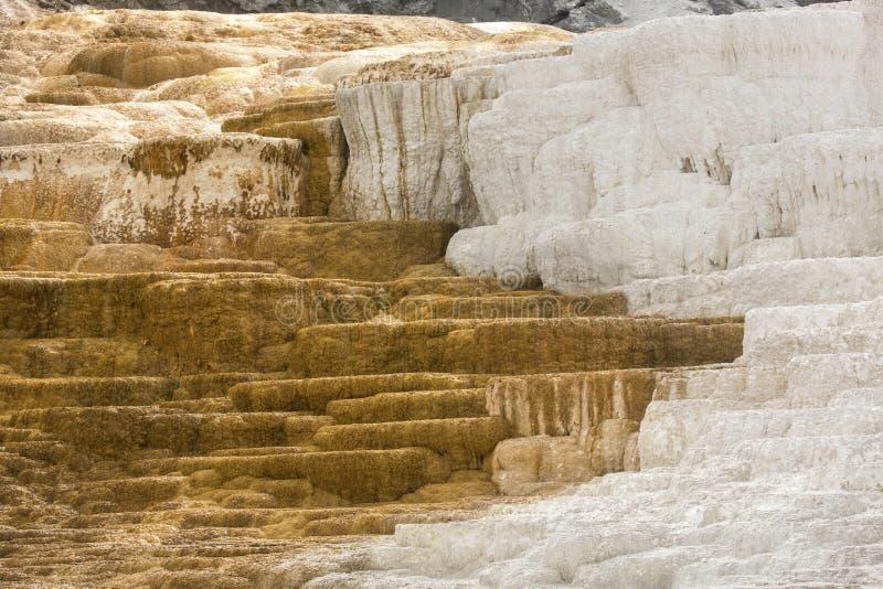 Quente, a rocha do carbonato chamou terraços dos formulários do travertino em Yellowst imagem de stock royalty free