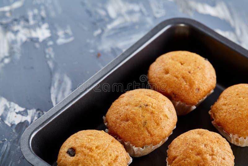 Queques cozidos frescos do chocolate em uma folha de cookie, vista superior, close-up, foco seletivo imagem de stock royalty free