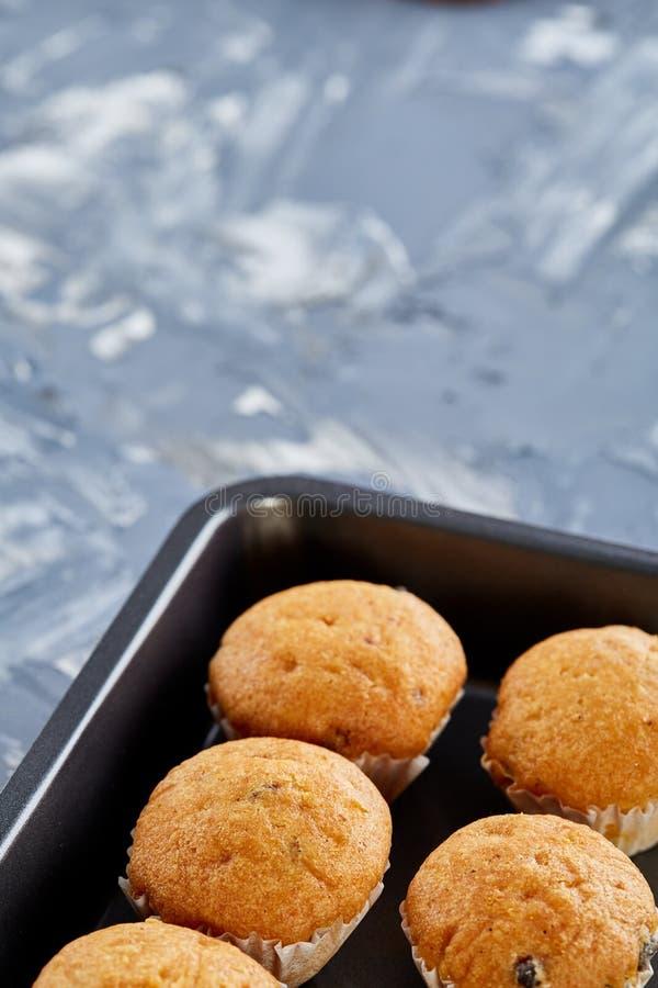 Queques cozidos frescos do chocolate em uma folha de cookie, vista superior, close-up, foco seletivo imagens de stock royalty free