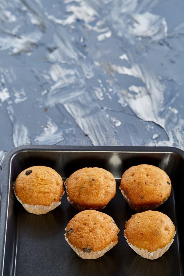 Queques cozidos frescos do chocolate em uma folha de cookie, vista superior, close-up, foco seletivo imagem de stock