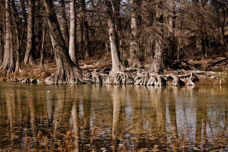 Querneigungen des Frio Flusses stockfotografie