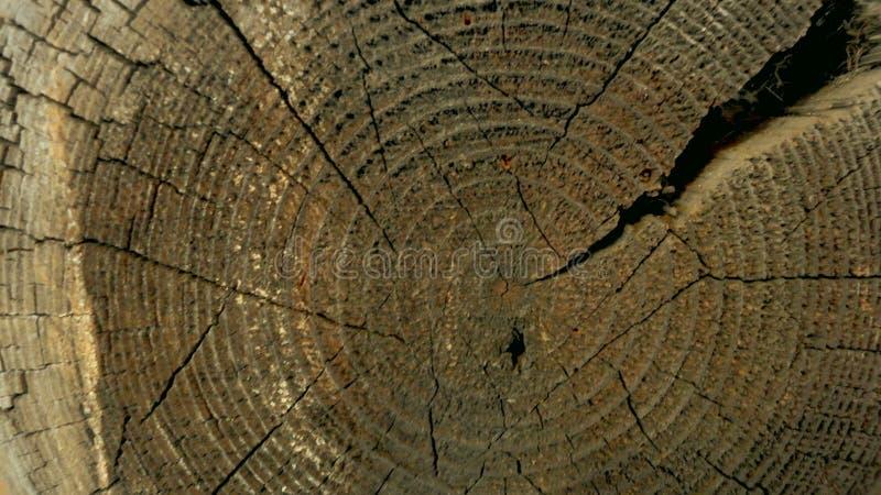 Querschnitt des Baumstammes eines alten Holzhauses stockbild
