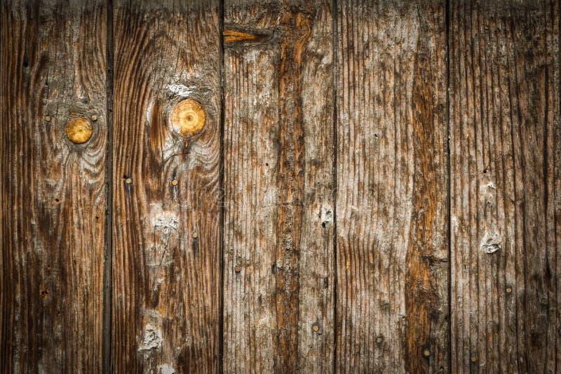 Queso de cerdo de madera viejo fotografía de archivo libre de regalías