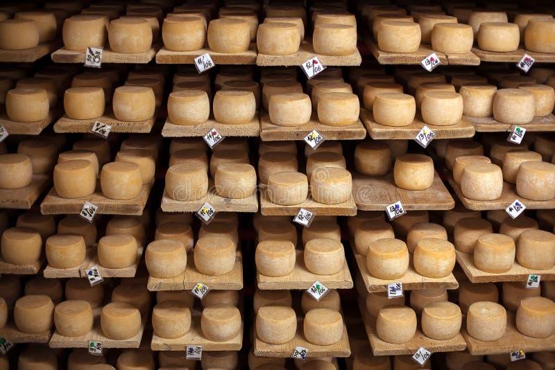 Queso de la leche en estantes imágenes de archivo libres de regalías