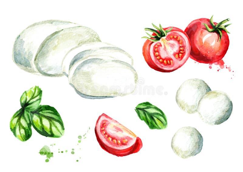 Queso de la mozzarella, albahaca, tomates fijados Ejemplo dibujado mano de la acuarela, aislado en el fondo blanco stock de ilustración