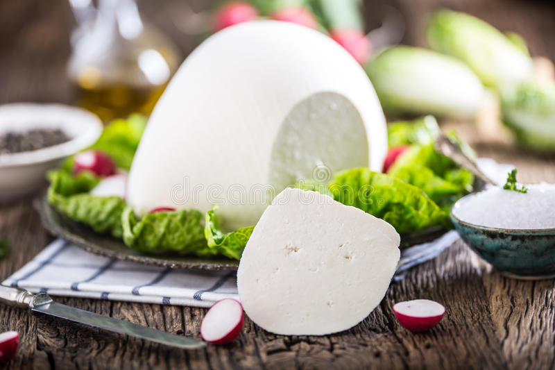 Queso de la vaca Queso blanco fresco de la vaca con pimienta de la sal del rábano de la ensalada de la lechuga y aceite de oliva fotografía de archivo