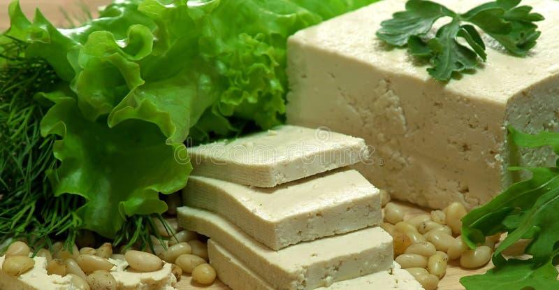 Queso de soja fresco foto de archivo libre de regalías