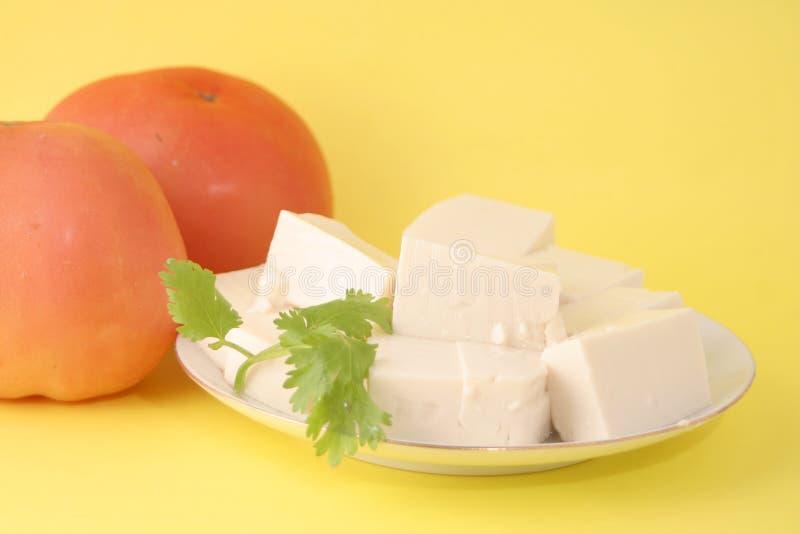 Queso de soja vegetariano fotos de archivo