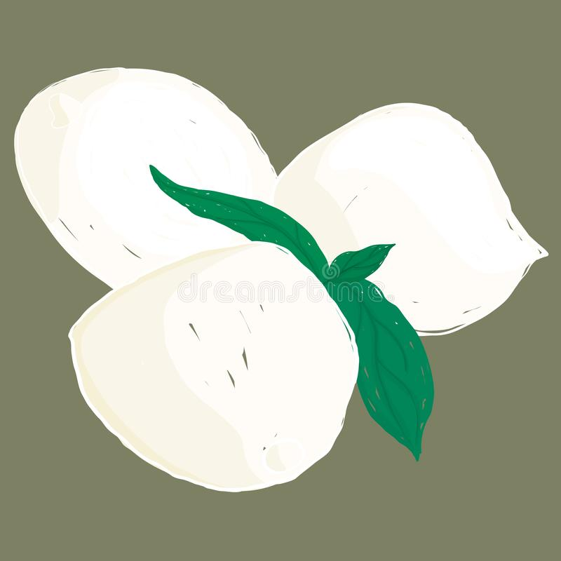Queso y albahaca painterly de la mozzarella del vector; editable, escalable ilustración del vector