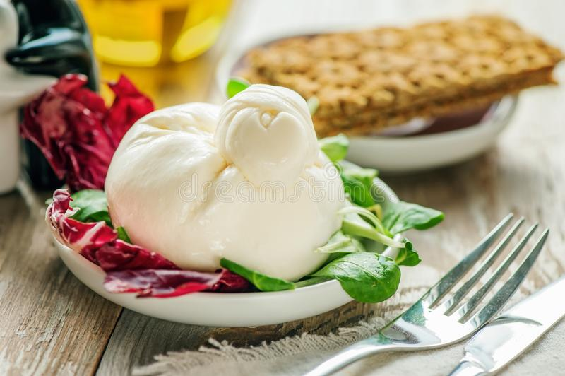 Queso y ensalada de Burato en un disco blanco Lechuga de Lollo Rosso, ensalada del berro y otras hierbas verdes El concepto de un fotografía de archivo libre de regalías