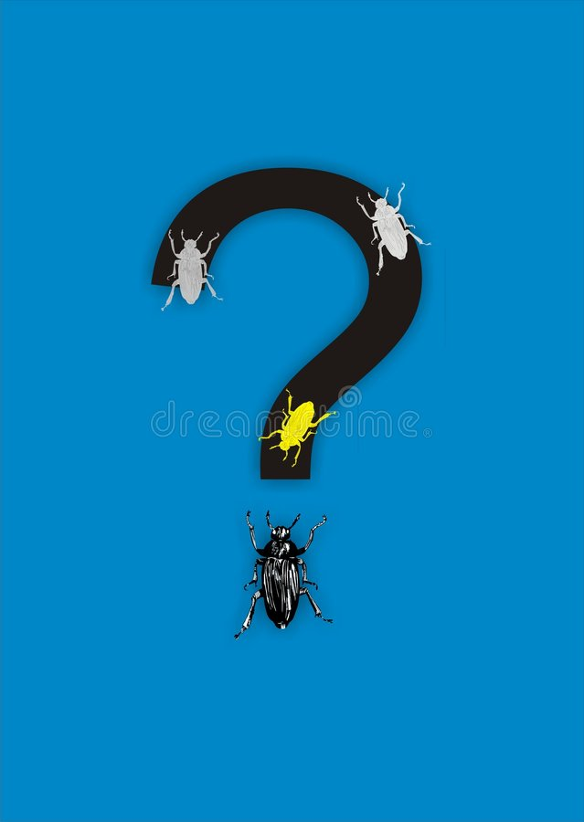 Question With Bugs Stock Photography