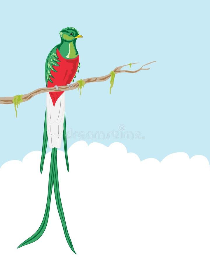Quetzal resplandeciente stock de ilustración