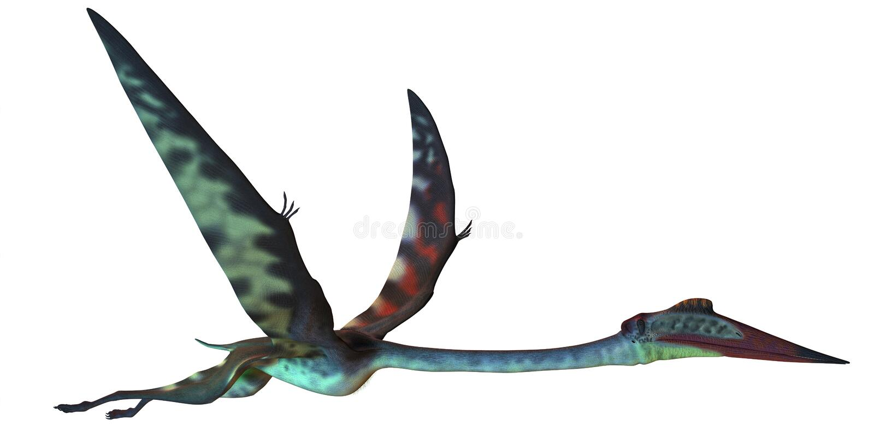 Quetzalcoatlus profil ilustracja wektor
