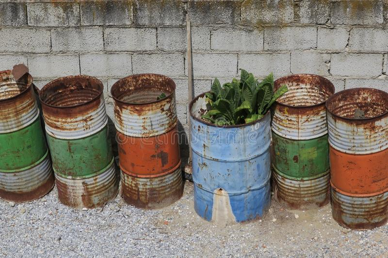 Six oildrums in a queue royalty free stock images