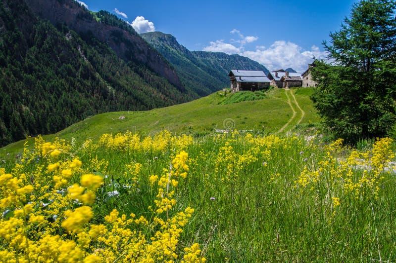 Queyras noir do ceillac de Bois em Hautes-Alpes em france imagem de stock