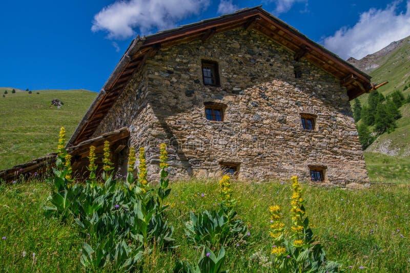 Queyras noir do ceillac de Bois em Hautes-Alpes em france imagens de stock royalty free