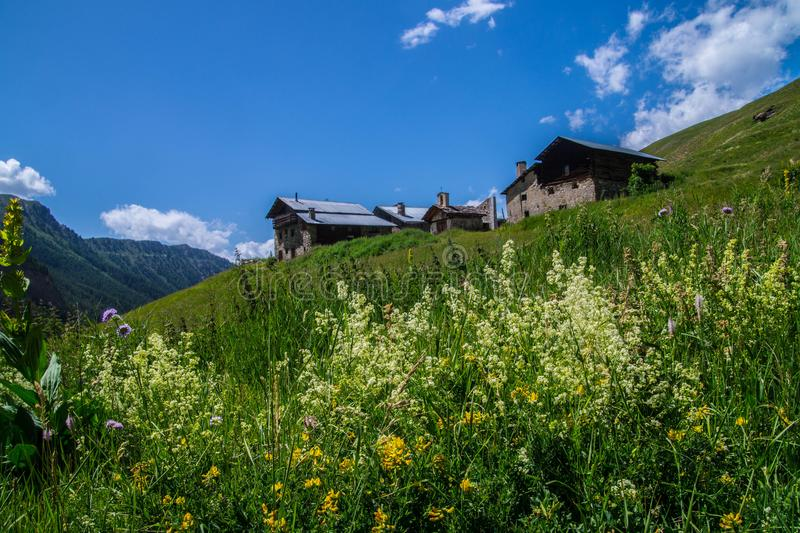 Queyras noir do ceillac de Bois em Hautes-Alpes em france foto de stock royalty free