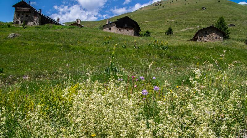 Queyras noir do ceillac de Bois em Hautes-Alpes em france imagem de stock royalty free
