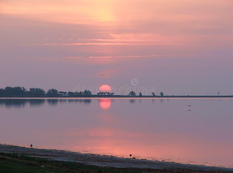 Qui viene il Sun fotografie stock libere da diritti